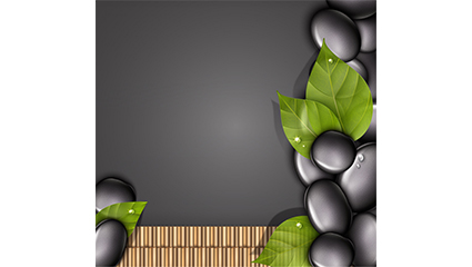 Black pebbles and leaves background vector
